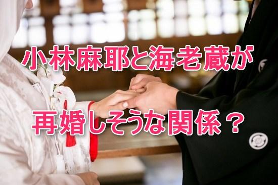 小林麻耶,海老蔵,再婚